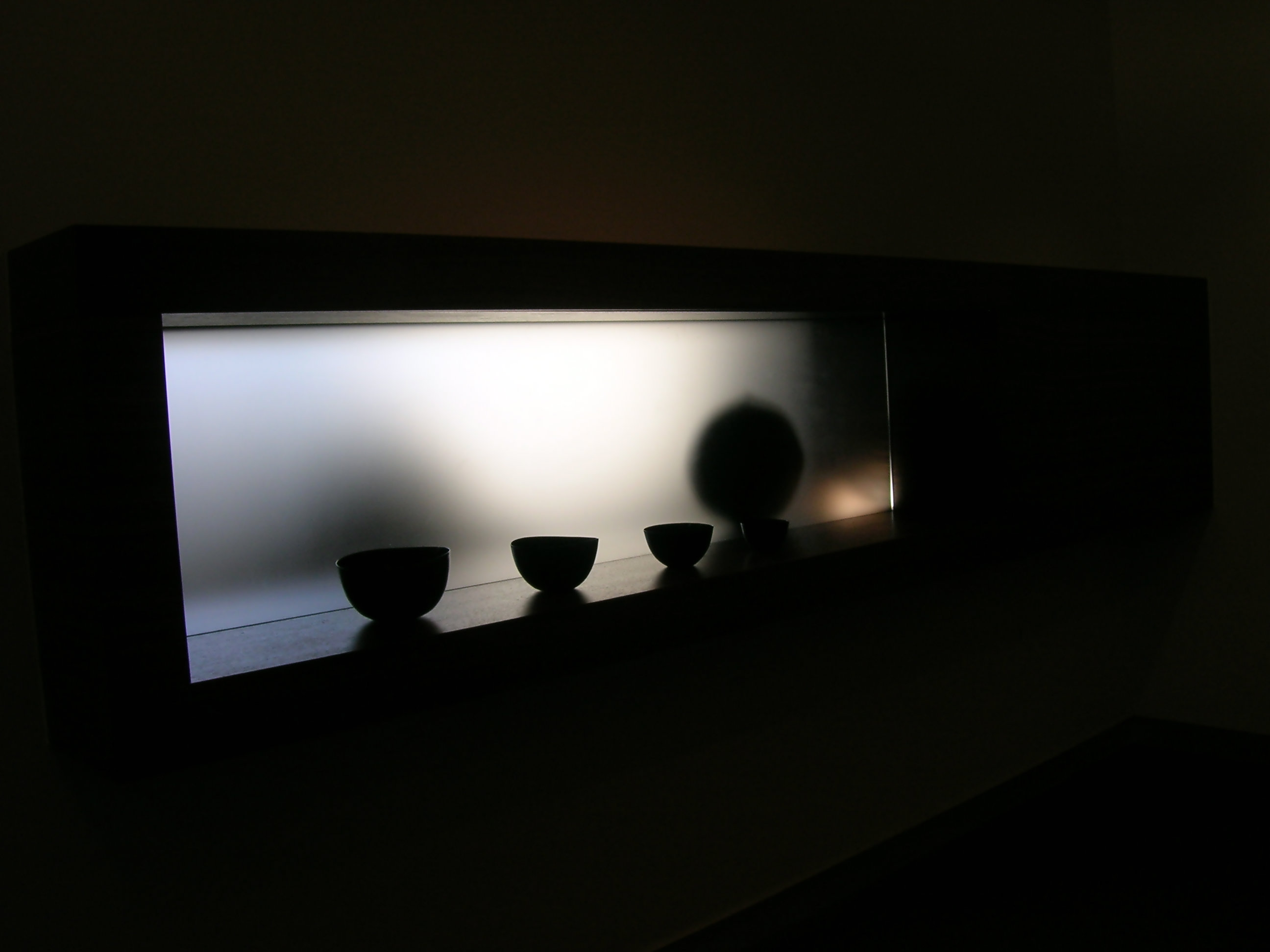 Backlit Display Case