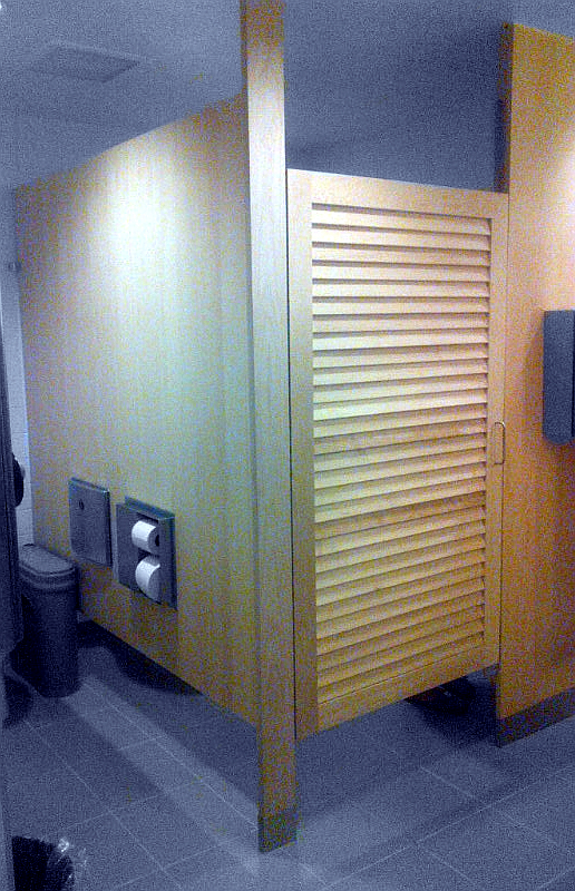 Custom Toilet Parions With Louvered Doors