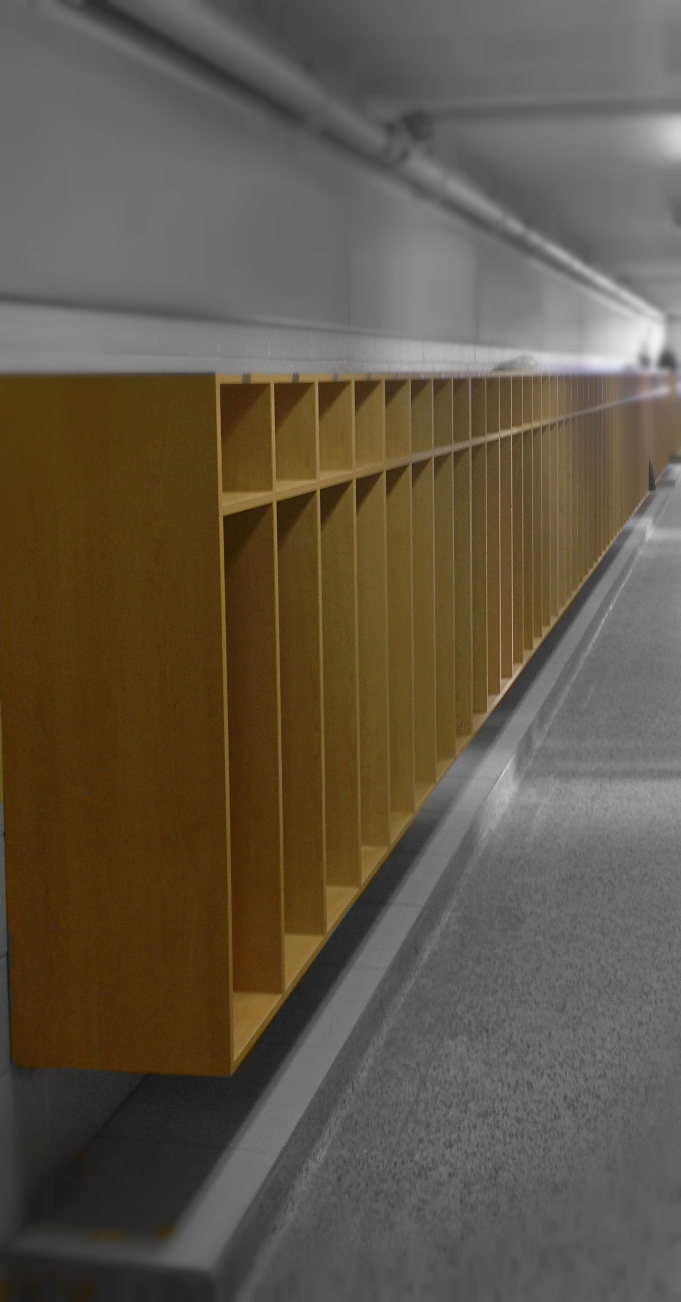 Public School Wood Lockers